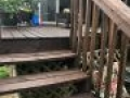 TWP 103 Dark Oak on Pine Deck Stairs