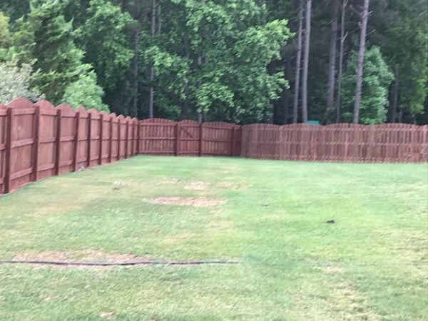 TWP Rustic 116 on Pine Fence