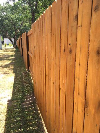 TWP 101 Cedartone on Cedar Fence