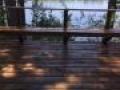 TWP 1501 Cedartone Lake Deck 3