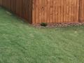 TWP 120 Pecan Fence8