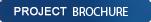projectBrochure